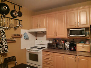 Lower 5 1/2  on a Duplex for Rent near Metro LaSalle