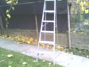 Step ladder+