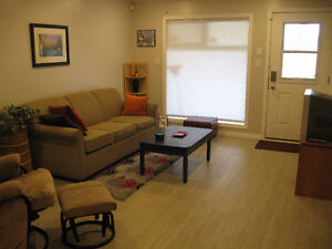 One bedroom fully furnished and equipped suite