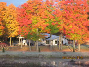 HOUSE,COTTAGE, FOR SALE ON CALABOGIE LAKE