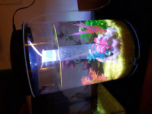 Great small aquarium for sale