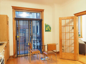 2br - 1000ft2 - FURNISHED, SPACIOUS 2 BDRM APT MCGILL