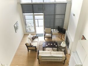 2 bedroom suite in the contemporary Cannery Lofts!
