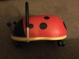 Small Wheelybug ladybird