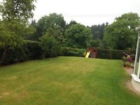 Garden maintenance, grass cuts, hedges cut, end of summer start of Autumn tidy up