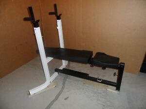 NORTHERN LICHTS WORKOUT CENTRE BENCH WITH ADJUSTABLE INCLINE & S