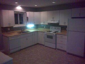 Penetang 3 Bedroom, Main Floor Laundry, Large Deck and Backyard