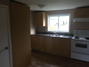Renovated 2 bedroom house on Herring Cove Road