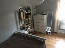 Polish, French, nice flatmates! minutes to Central London
