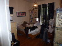 3 1/2...4 1/2...DOWNTOWN - Guy metro (one year lease)