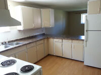 1/2 Month Free unit 4-Plex in Forest Lawn