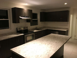 Kitchen Cabinets (Lightly Used)