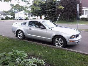 2006 Ford Mustang With Black Stripes Coupe (2 door)
