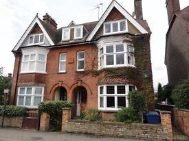 One bedroom flat to rent centre Cranleigh