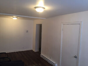 Amazing 3 1/2 fully renovated apartment for rent