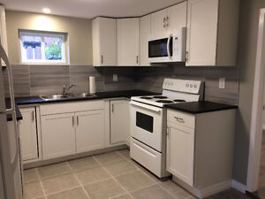 New and renovated basement apartment - Pickering West Shore