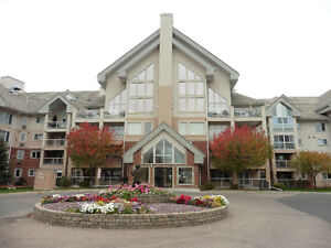 Quiet, adult orientated condo with many extras