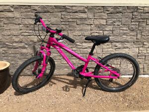 """20"""" Specialized Hot Rock Mountain Bike"""