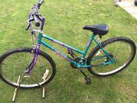 Ladies magna mountain bike