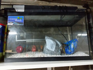 Aquarium and all accessories