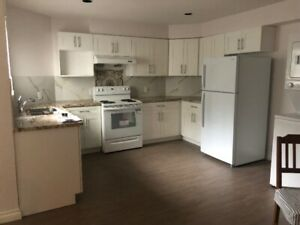 BRAND NEW, FULLY FURNISHED basement suite for rent close to SFU.