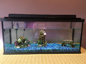 30 Gallon fish tank & accessories