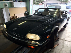 Jaguar XJS V12 Exotic Collector Edition