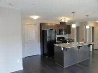 2 Bedroom Condo in Windermere Area