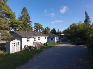 BEAUTIFUL WELL MAINTAINED COTTAGES- STEPS TO STURGEON LAKE