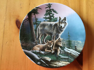 First Outing Plate - Kevin Daniel - Wolves / Wolf