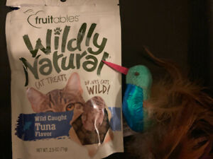 litter box, cat treats and toy
