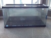 Tanks and supplies forsale