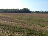 90 acres for sale-read full description before contacting
