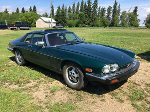 Jaguar XJS in Great Driving Condition! Great Colours! Trade For?