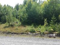 Terrain vacant à vendre à Val-des-Lacs, Laurentides/ prix réduit