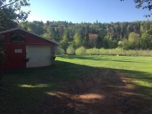Apple Orchard for Sale