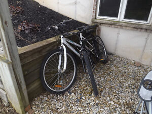 Set of 2 Next bikes