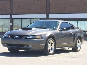 GT Deluxe 2dr  2003 Ford Mustang