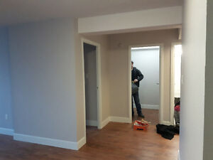 Pro Painting and Property Services Peterborough Peterborough Area image 9