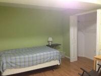 1Large bedroom, walkout basement @ Somerset SW