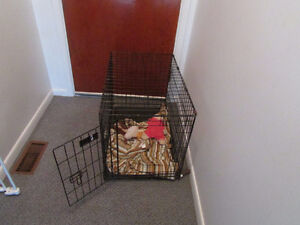 Dog crate for sale ;50 $