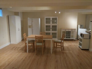 One Bedroom Beautiful Basement Apartment in Byron for Rent