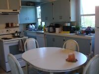 01 Nov. Room Available in Shared House