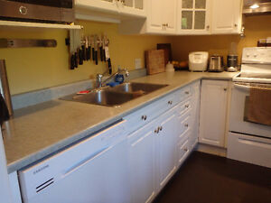 Need counters sinks and taps for renovating your cabin?