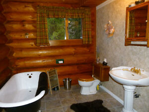 log house for sale Revelstoke British Columbia image 11