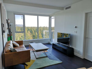 UBC Wesbrook 1Br+Den Condo for rent