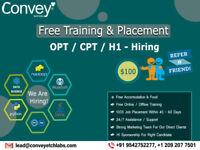 We are Hiring! Job opportunities in USA for OPT / CPT Students