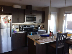Roommate wanted near Stadium LRT--Reduced Rent!!!