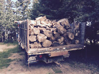 Free load of dry wood Red Deer area