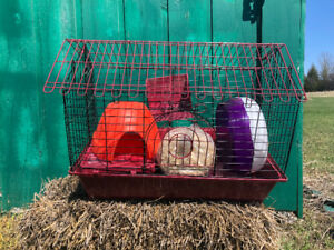 Small Animal cage w/ accessories